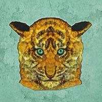 Mint Tiger - Ancello